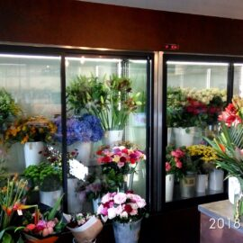 2 x SCh-AK 1805_flower refrigerator – Lithuania