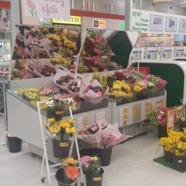 RAPA-Refrigerated flower counter_3