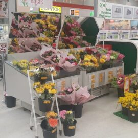 RAPA-Refrigerated flower counter_4