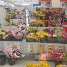 RAPA-Refrigerated flower counter_5